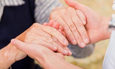 La phytothérapie contre l'arthrose